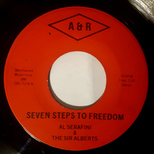 Al serafini seven steps to freedom